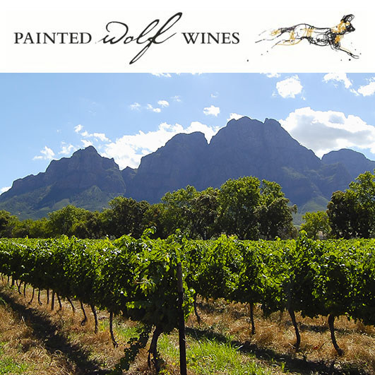 A view of the Painted Wolf Winery with mountains in the background